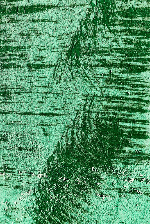 Pattern illustrativo della disciplina Tai.chi